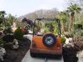 Jeep_ride