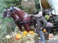 Nigloland-03-11-2012-(38)