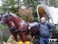 Nigloland-03-11-2012-(39)