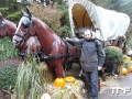 Nigloland-03-11-2012-(40)