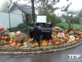 Nigloland-03-11-2012-(18)