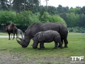 Serengeti-Park-18-05-2014-(29)