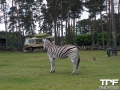 Serengeti-Park-18-05-2014-(33)