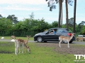 Serengeti-Park-18-05-2014-(66)