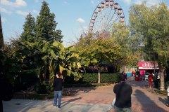 Allou-Fun-Park-26
