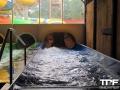 2daagse-trip-Nederland-506
