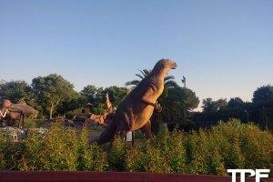 Azur Park - juli 2020