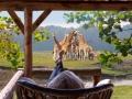 safari-resort-beekse-bergen-uitzicht-savannes