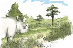 safaripark-beekse-bergen-neushoorn-verblijf-schets
