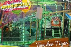 tom-der-tiger-2