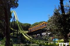 Cavallino-Matto-64