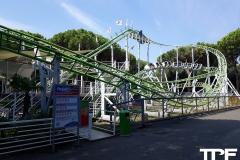 Cavallino-Matto-77