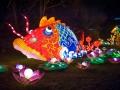chinalight_opening_51