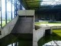 Algae-Slide