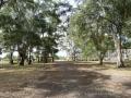 mariarenatafranca_parquedelaciudad-4-e1342643927681