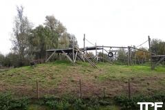 De-Zonnegloed-46