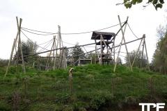 De-Zonnegloed-49