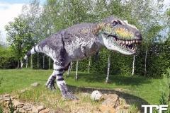 Dinolandia-15