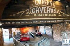 Disney-California-Adventure-Park-(10)