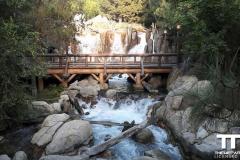 Disney-California-Adventure-Park-(34)