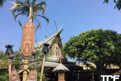 Disneyland-Hong-kong-22