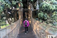 Disneyland-Hong-kong-28