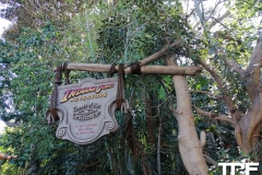 Disneyland-resort-Anaheim-114