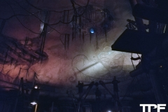Disneyland-resort-Anaheim-117
