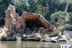 Disneyland-resort-Anaheim-137