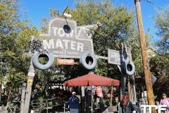 Disneyland-resort-Anaheim-169