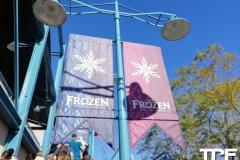 Disneyland-resort-Anaheim-186