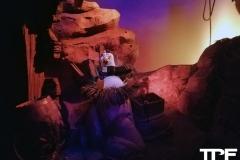 Disneyland-resort-Anaheim-218