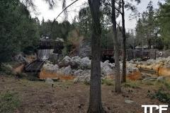 Disneyland-resort-Anaheim-254