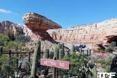 Disneyland-resort-Anaheim-299