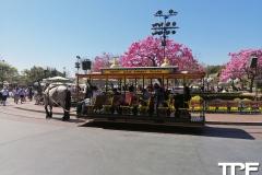 Disneyland-resort-Anaheim-463