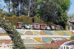 Disneyland-resort-Anaheim-491