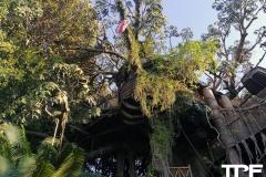 Disneyland-resort-Anaheim-539