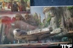 Disneyland-resort-Anaheim-622