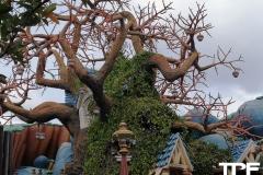 Disneyland-resort-Anaheim-70
