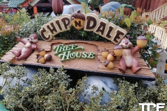 Disneyland-resort-Anaheim-76