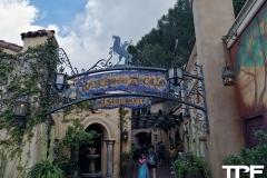Disneyland-resort-Anaheim-84