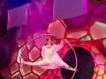 Cirque Imagine Show