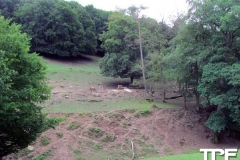 Eifelpark-(16)