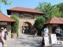 Erlebnispark Tripsdrill - juni 2017