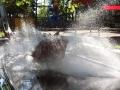 Erse-Park-Uetze-16-05-2014-(43)