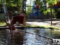 Erse-Park-Uetze-16-05-2014-(45)
