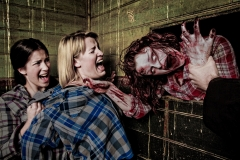 Haunted-House_JandrieLombard_Shutterstock