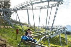 drachenflitzer-alpine-coaster-wildschoenau-sommer-fg-alex-mayr-rechte-wildschoenau-tourismus-1-