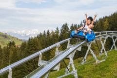 drachenflitzer-alpine-coaster-wildschoenau-sommer-fg-alex-mayr-rechte-wildschoenau-tourismus-19-