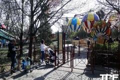 Family-Park-17